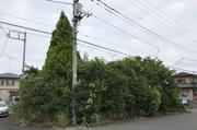 ひたちなか市にて戸建てリフォーム前のかたづけ&庭の整地|LS