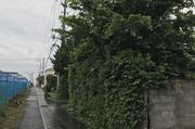 ひたちなか市田彦にて木造住宅解体工事の様子 LS